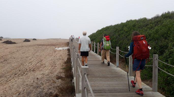 El Camino Costa, Portugál parti út, fapallók