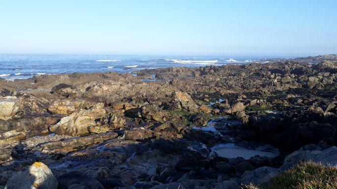 Portugál Camino Costa, óceánparti kövek