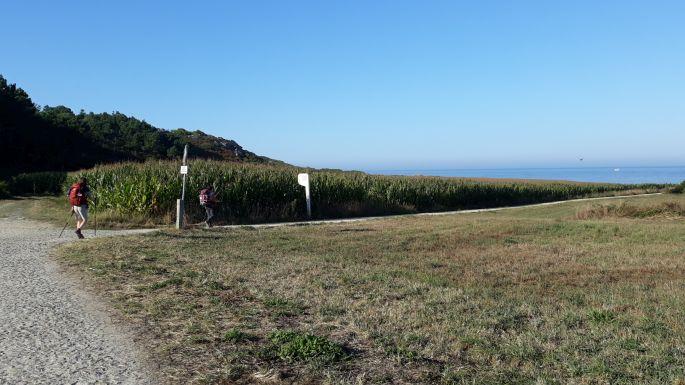 Portugál Camino Costa, ki tudja hogyan, de itt már jobb kéz felől volt az óceán és már visszafelé haladunk :-)