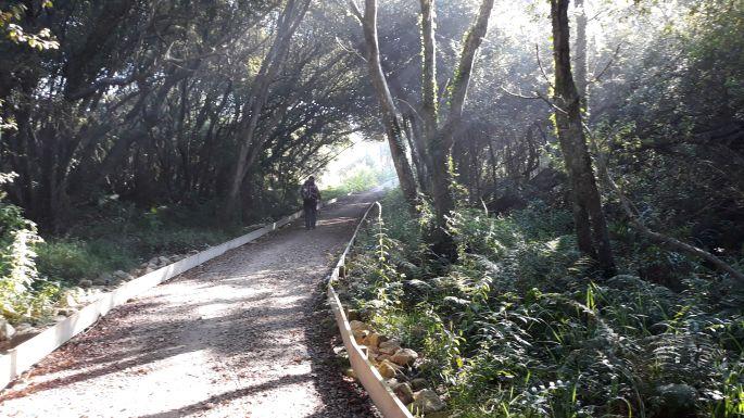 27_portugal_camino_costa_parti_ut.jpg
