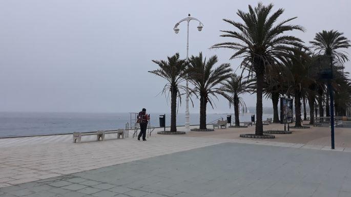 Portugál Camino Costa, Oia, a parti sétány pálmafákkal