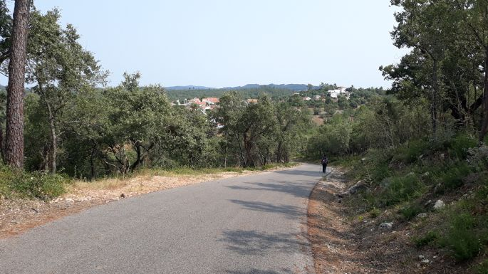 Portugál camino, aszfaltút