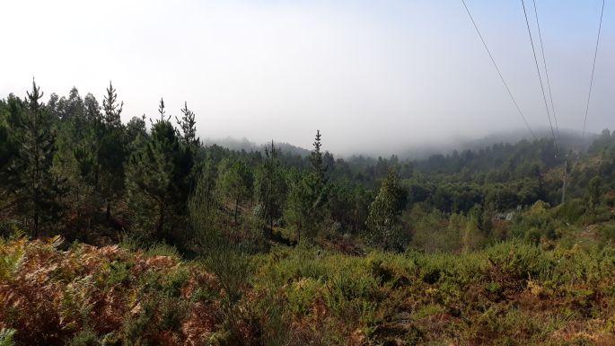 Variante Espiritual, a hegy tetején a felhők között