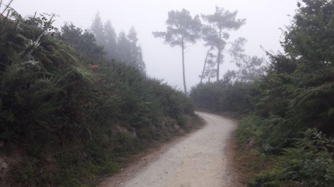 Portugál Camino, út