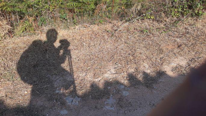 Portugál camino, úton a zarándok, az árnyék tulajdonosa én vagyok :-)