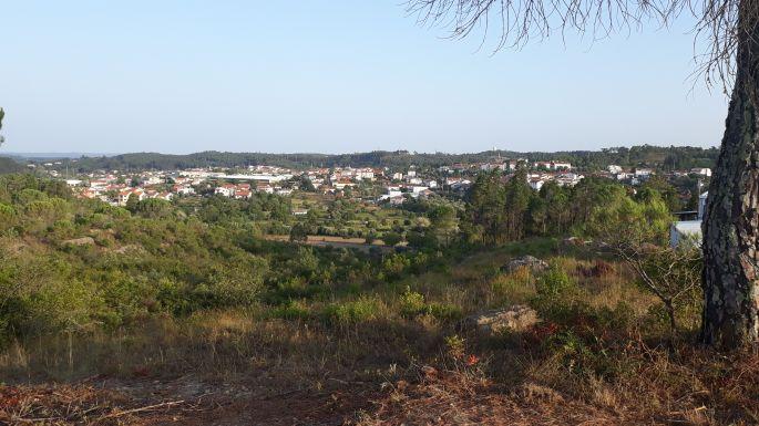 Portugál camino, táj