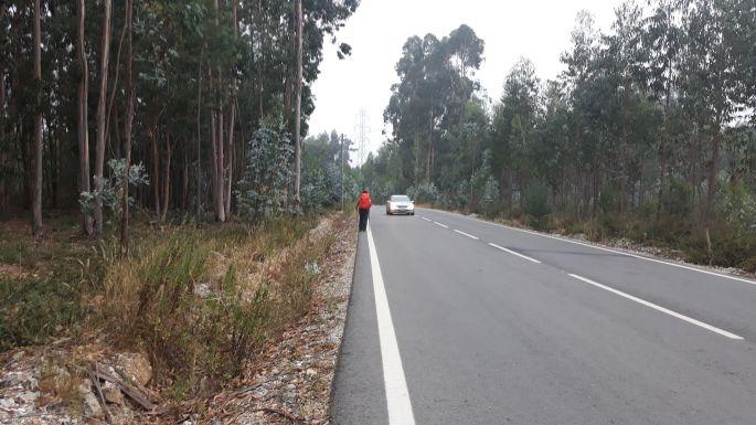 Portugál camino, gyaloglás aszfaltúton