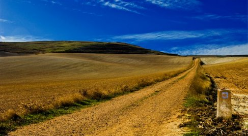 El Camino zarandokut tajkep.jpg
