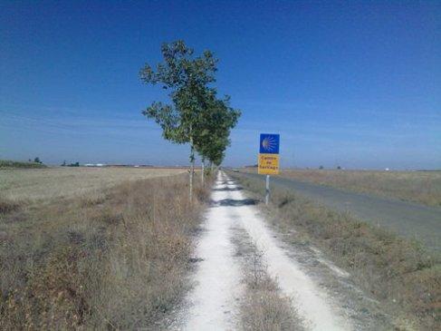 El Camino zarandokut.jpg