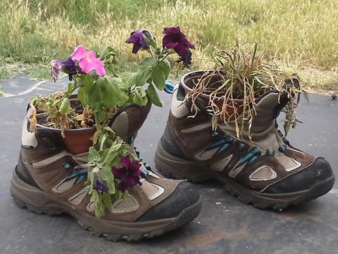 A túrabakancs másodlagos funkciójában virágcserépként üzemel.