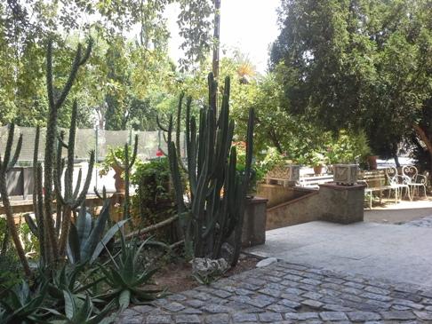 Gyönyörű növények az épület mellett.