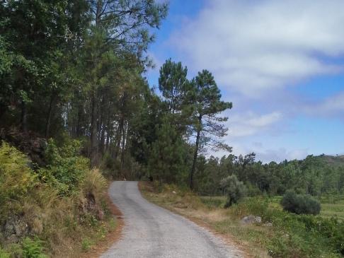 Egy kis emelkedő a portugál úton.
