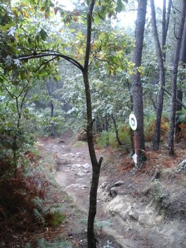 Egy mélyen kivájt ösvény.