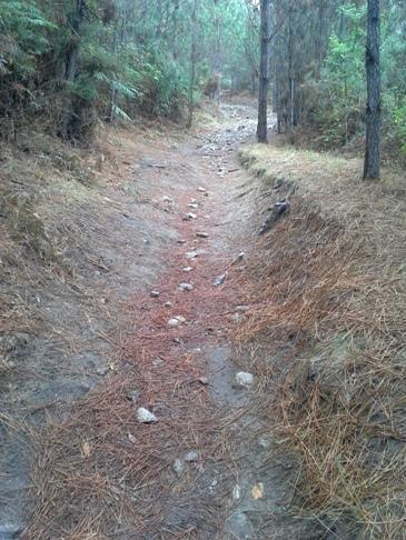 Azért nem mindenhol volt sziklás az út.