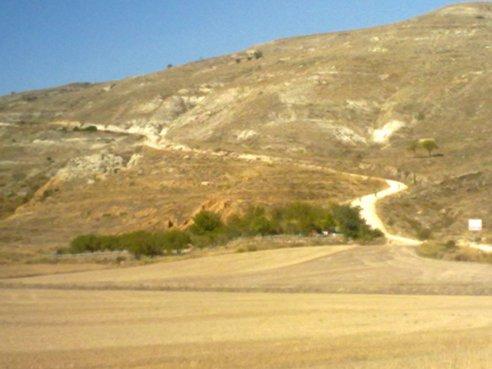 El Camino 426_1.jpg