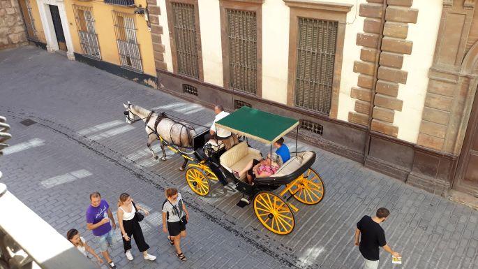 Andalúz körutazás, Sevilla, kilátás a szobánkból az utcára konflissal