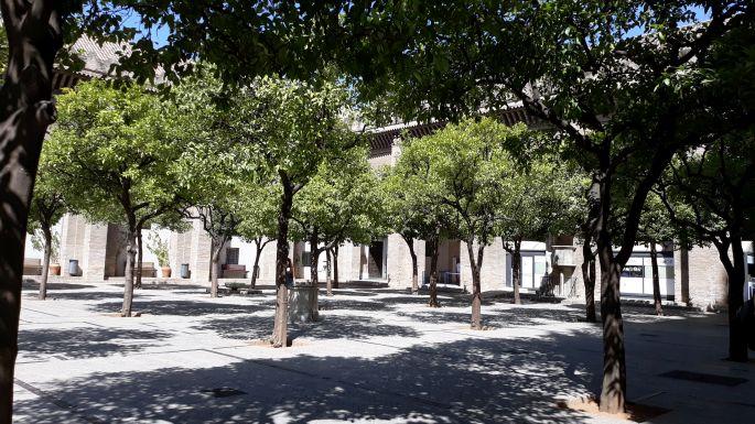 Andalúz körutazás, Sevilla, a katedrális belső kertje