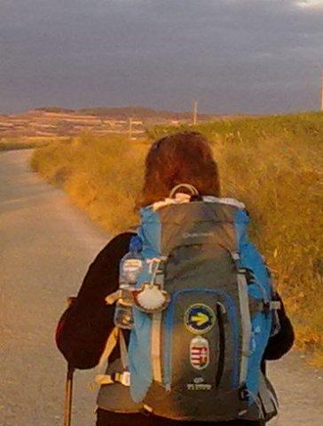 El Camino 262_1.jpg