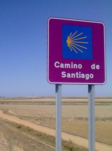 El Camino 458_1.jpg
