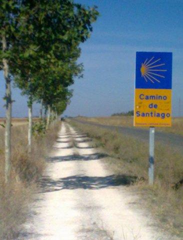 El Camino 508_1.jpg