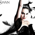 Fekete hattyú (Black Swan)