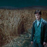 Harry Potter és a Halál Ereklyéi - 1. rész