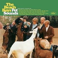 50 éves a Pet Sounds