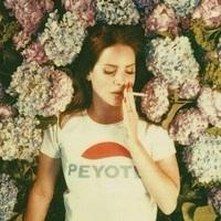 Lana Del Rey: Shades Of Cool + FRISSÍTÉS: Ultraviolence (a teljes címadó dal)