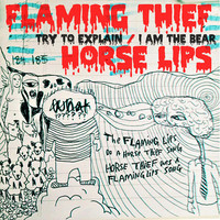 The Flaming Lips & Horse Thief: Try To Explain / I Am A Bear – a teljes split single  + videoklipek!