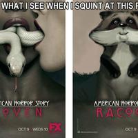 American Horror Story: Racoon