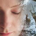Márciustól akár ingyen is megnézhetjük Enyedi Ildikó Oscar-díjra jelölt filmjét