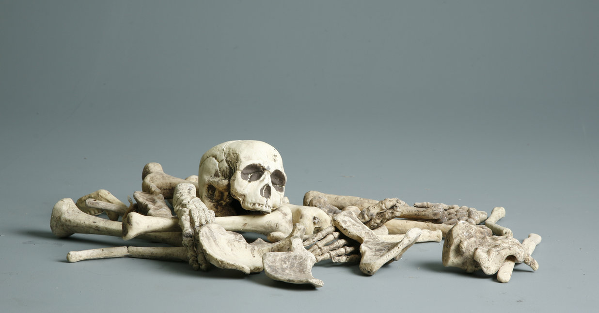 bones_1_by_mjranum_stock.jpg