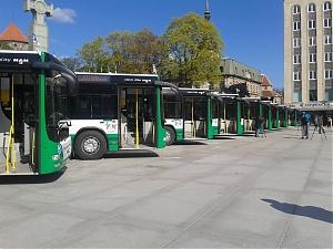 120803_obsches_trans_bus_tall.jpg