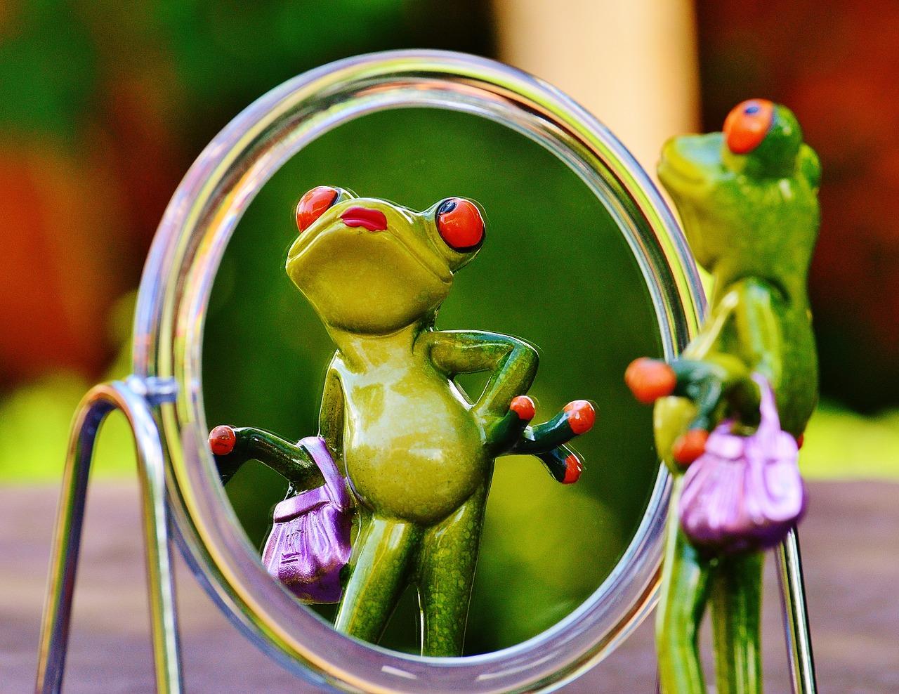 frog-1499068_1280.jpg