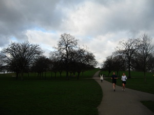 Regent's Park, Primrose Hill, és kocafutók