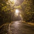 Esti fotó séta: Sváb-hegyi hangulat
