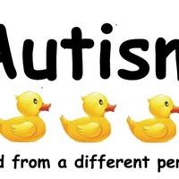 Autizmusban érintett családok számára modellprogram indul