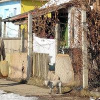 Az út szélén hagyja a rászorulókat a hazai lakáspolitika ...
