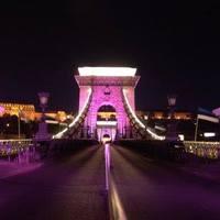 Minden Nő számít! - rózsaszín lánchidi séta