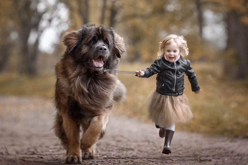 gyermek_kutyaval.jpg