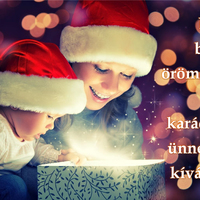 Kellemes karácsonyi ünnepeket kívánunk!