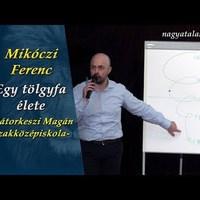Mikóczi Ferenc: Egy tölgyfa élete