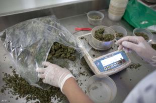 Ön legalizálná a marihuánát orvosi célokra?