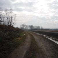 Újévi séta