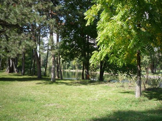 55_floridsdorfer_wassenpark.jpg