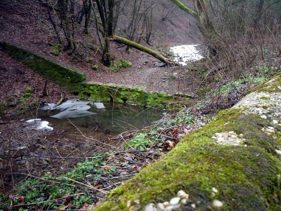 35_mellettunk-patak_meder.jpg