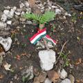 A szegedi 46/III. zászlóalj temetőjének lokalizálása a Mrzli Vrh északi oldalán