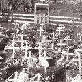 """""""Cotičii temető, egyes honvéd sírja benne az első…"""""""