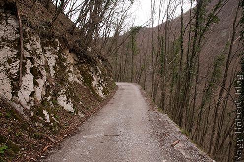 A Javorca-templomhoz vezető út