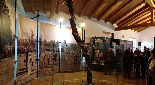 A doberdói fa a kiállítás középpontjában